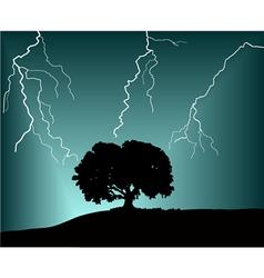 Storm vector