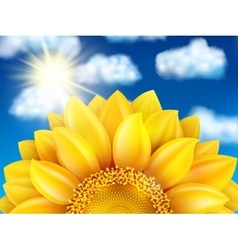 Sunflower against blue sky eps 10 vector