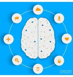 brain info vector image vector image