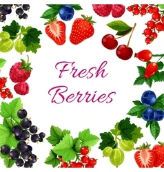 Twigs with berry or fruit food poster vector