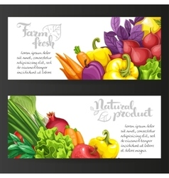 Two horizontal banners with fresh fruits and vector