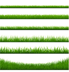 grass borders set vector image vector image
