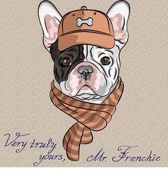 Hipster dog french bulldog vector