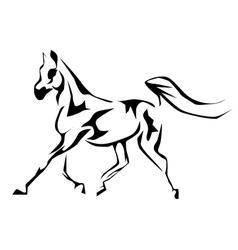 arabian horse vector image vector image