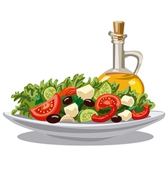 fresh green salad vector image vector image