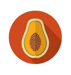 Papaya flat icon tropical fruit vector