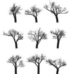 Set of nine silhouettes of trees vector