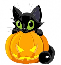 Halloween black cat vector
