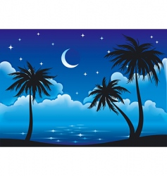 night coast vector image vector image