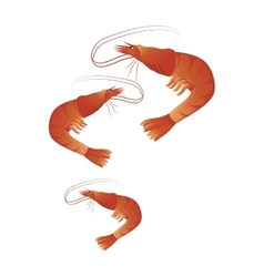 Lobster seafood menu icon vector