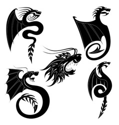 Black dragons tattoo vector