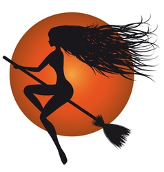 halloween witch on broomstick vector image vector image