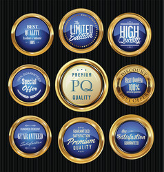 luxury gold and blue design badges and labels vector image vector image