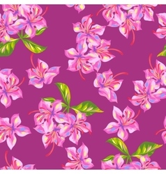 Seamless pattern with rhododendron flowers bright vector