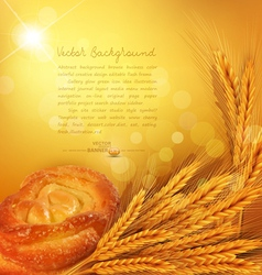 Background with gold ears of wheat bun sunrays vector
