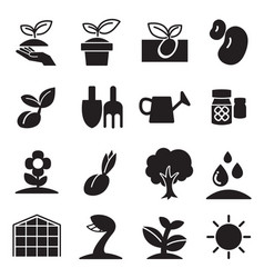 cultivate plant grow icons set vector image