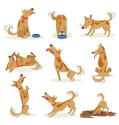 Brown dog set of normal everyday activities vector