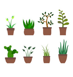 Color set with house plants icons vector