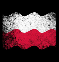 polish flag grunge vector image vector image