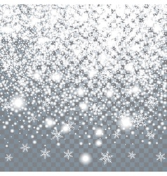 Falling large snow on a transparent background vector