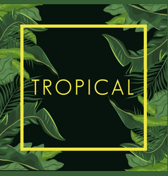 Tropical leave palm tree poster vector