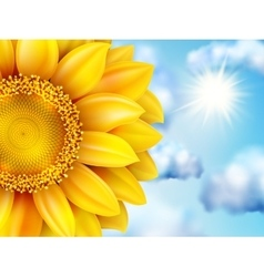 Beautiful sunflower against blue sky eps 10 vector
