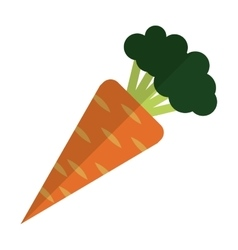 Whole carrot icon vector