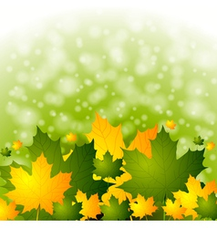 Colourful autumn backdrop vector