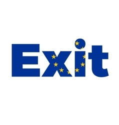 Exit from European Union on Referendum vector image