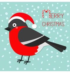 Merry christmas greeting card bullfinch winter red vector
