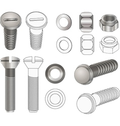 The complete set bolts and nuts vector