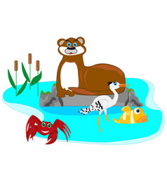 otter in lake vector image