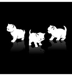 White cats silhouettes icons on black background vector