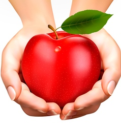 Ed ripe apple in a hands concept of diet vector