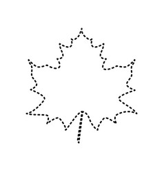 Maple leaf sign black dashed icon on vector