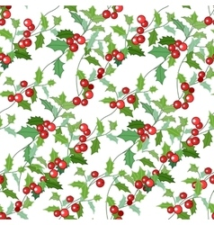 Seamless Christmas pattern with holly branches and vector image