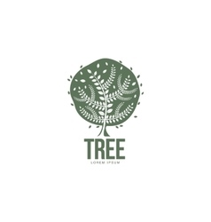 Stylized round shaped green oak tree logo template vector image