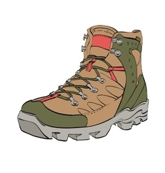 Womens Hiking shoes vector image