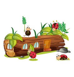 Ladybugs and a house vector