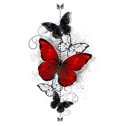 Red and black butterflies vector