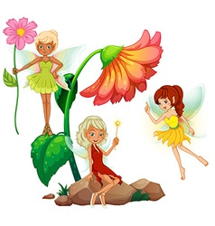 Fairies vector