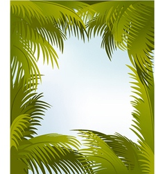 Palm frame vector image vector image