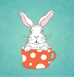 White rabbit in a red cup vector