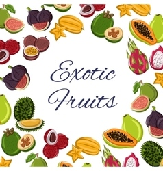 Fruits poster tropical or exotic food vector