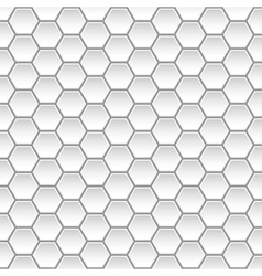 background white vector image vector image