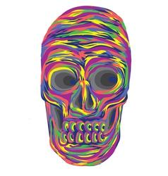 Color full skull vector