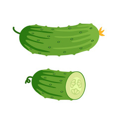 cucumber and half of cucumber vector image