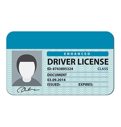 Driver license vector