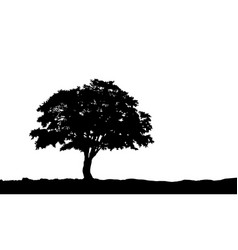 tree on the hill silhouette on vector image vector image