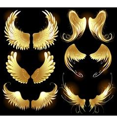 golden wings of angels vector image